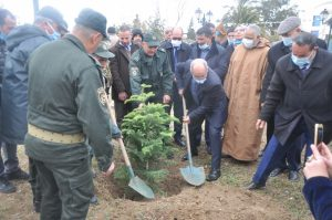 Afforestation campaign on the occasion of the International Day of Forests